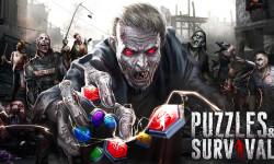 Puzzles Survival