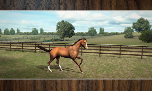 My Horse скриншот