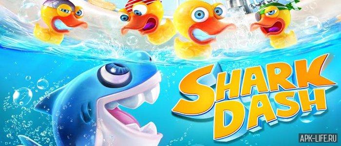 Shark Dash Android