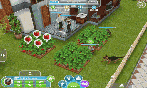 The Sims FreePlay Android сад
