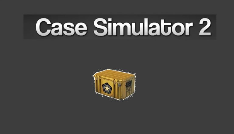 Case Simulator 2