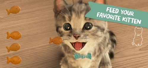 Little Kitten_3